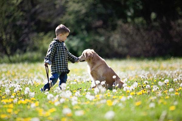 Smiley: Ο τυφλός σκύλος που βοηθάει ΑμεΑ