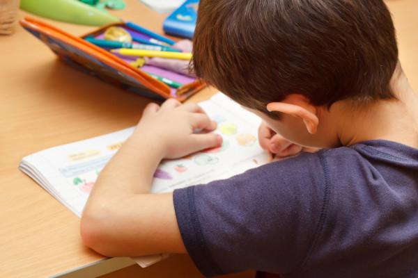 depositphotos_4490725-stock-photo-boy-doing-homework-with-color
